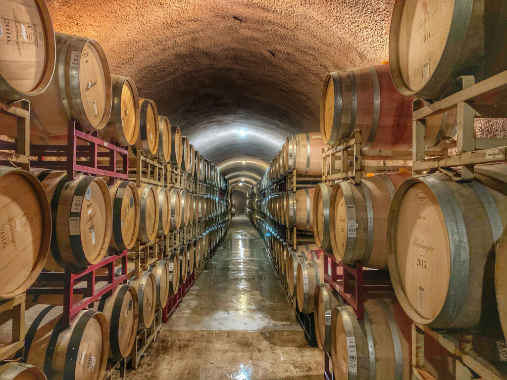 umbriaction-wine-tour-in-umbria-and-tuscany